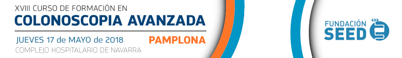 PAMPLONA Banner Web SEED